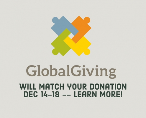 Global giving donation match